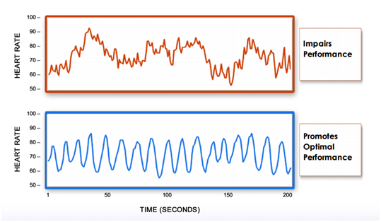 Heart rate variability (HRV) is a great way to measure stress