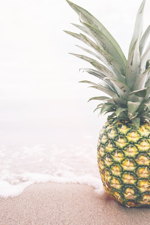pineapple, bromelain, speed up recovery